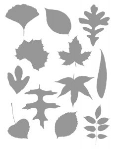 photo relating to Leaf Shapes Printable named Investigating Leaf Styles - Character Wander Game - Imaginative