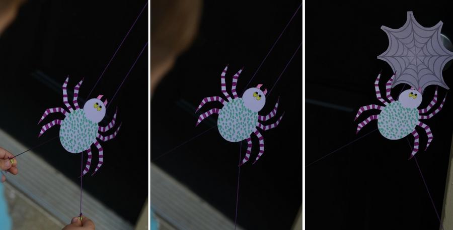 Spider Climbing Toy