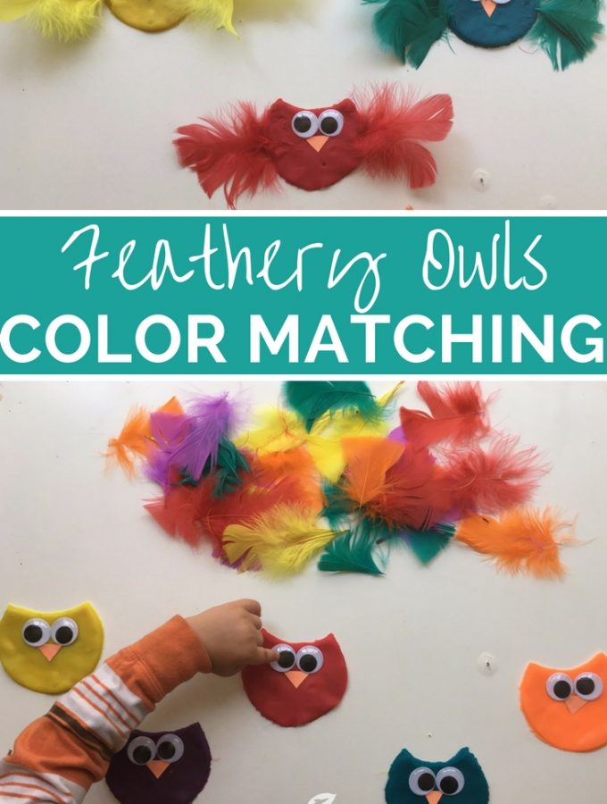 Feathery Owls Color Matching Fine Motor Activity