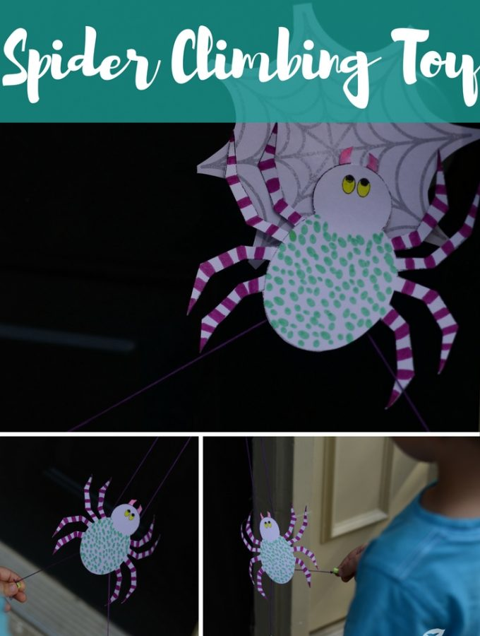 A Very Busy Climbing Spider Toy and STEM Craft