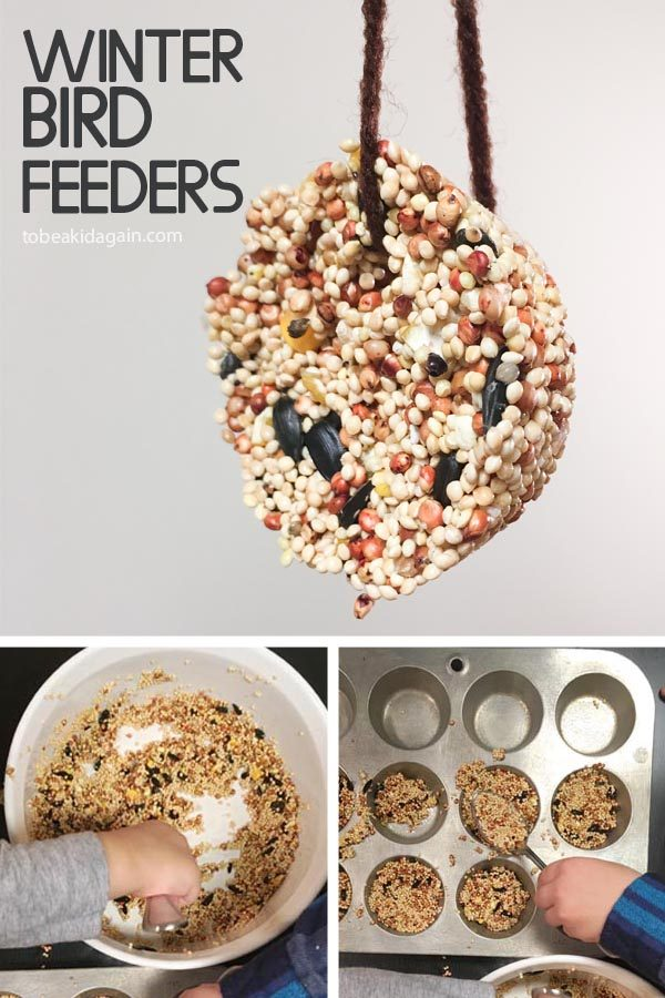 Making Birdseed Cookies for a DIY Winter Bird Feeder